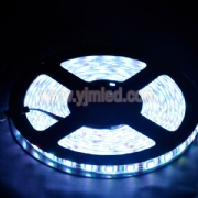 SMD5050 LED White Light Strip
