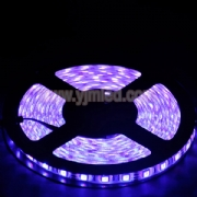 SMD5050 LED Purple Light Strip