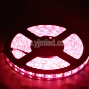 SMD5050 LED Red Light Strip